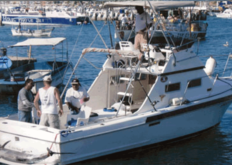 california to Mexico fishing charter