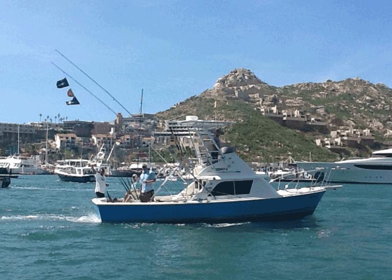 Bertram 33 foot boat