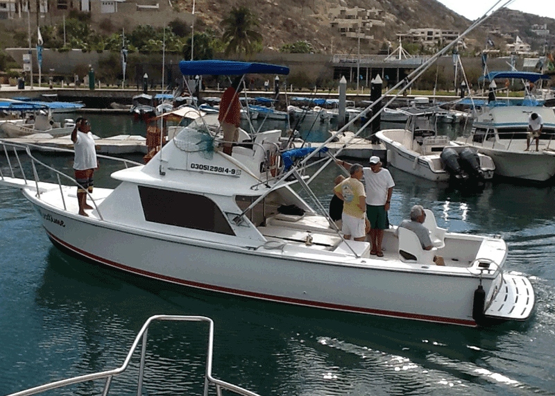 Bertram fishing charter
