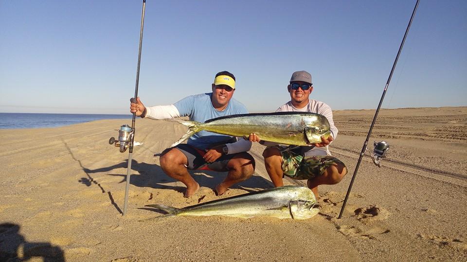 shoreline fishing in Cabo MX