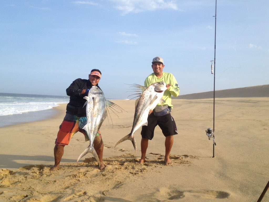 rooster fishing cab san Lucas Mexico