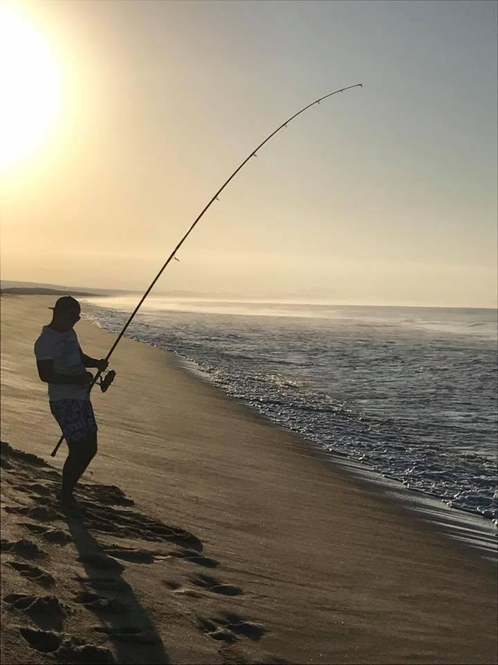 large fishing rod
