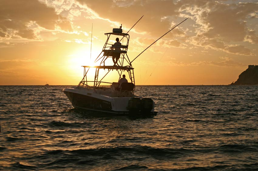 Cabo family fishing tours